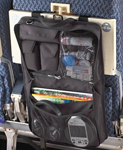 Passenger Back Seat Organizer