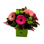 Our Range of Floral Arrangements