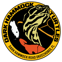 Dark Hammock Turtles