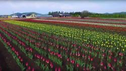 GoodDay Hokkaido – Welcome to HOKKAIDO OFFICIAL TOURISM WEBSITE