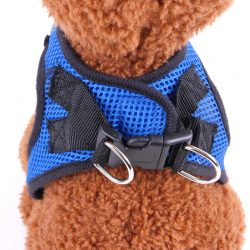 small dog harnesses manufacturer
