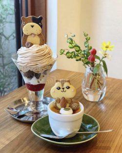 Chipmunk 🐿 coffee & dessert 🍨