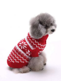 dog clothing manufacturer