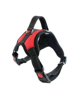 dog harnesses dog manufacturer