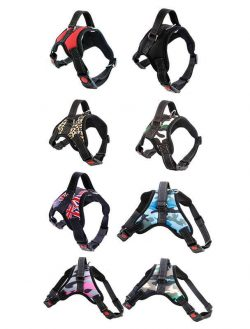Shock Absorbing Dog Harness Dog Lesh Manufacturer