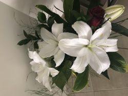 Happy Valentine's my Darling. Beautiful Lily